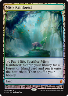 Misty+Rainforest_EXP.jpg