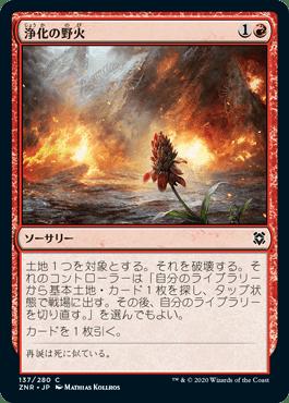 浄化の野火