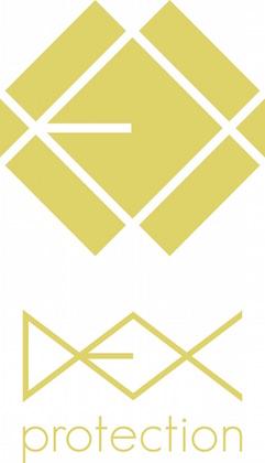 team_dex-logo-2.jpg