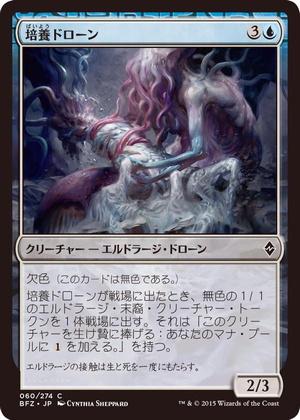 card05.jpg