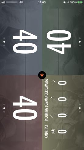 12_commanderdamage.jpg